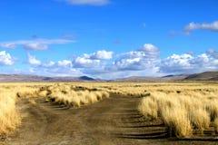 美丽的干草原和云彩 免版税库存照片