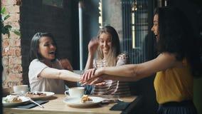 美丽的年轻女人加入的手一起和笑在现代咖啡馆 股票视频
