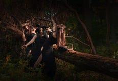 美丽的年轻巫婆在黑暗的森林里 免版税图库摄影