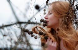 美丽的年轻性感的红发女孩喜欢微笑对捉住在杉木枝杈的杉木和她美丽的华美的红色头发 库存图片