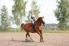 美丽的幼小白肤金发的妇女骑马栗子马 库存照片