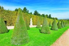 美丽的庭院在一个著名宫殿凡尔赛 库存图片