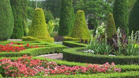 美丽的庭院在家 股票录像