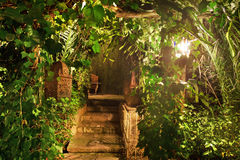 美丽的庭院在晚上 库存图片
