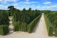 美丽的庭院在著名凡尔赛宫 图库摄影