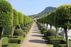 美丽的庭院 库存图片