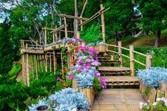 美丽的庭院 库存照片