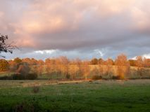 美丽的开放秋天领域Dedham太阳集合轻的树枝 库存照片