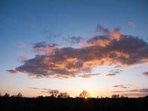 美丽的开放秋天领域Dedham太阳集合轻的树枝s 免版税库存照片
