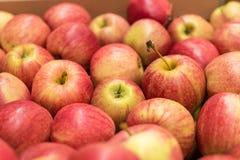 美丽的开胃果子红色背景用在a.c.的红色苹果 免版税库存照片