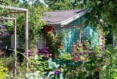 美丽的开花的八仙花属包围的庭院棚子,玫瑰a 免版税图库摄影
