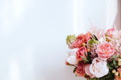 美丽的开花的花 库存照片