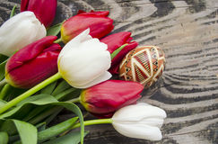 美丽的开花的郁金香花和复活节五颜六色的鸡蛋 背景背景卡片设计花卉例证 背景蓝色云彩调遣草绿色本质天空空白小束 与美好的fres的春天背景 免版税图库摄影