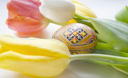 美丽的开花的郁金香花和复活节五颜六色的鸡蛋 背景背景卡片设计花卉例证 背景蓝色云彩调遣草绿色本质天空空白小束 与美好的fre的春天背景 免版税库存图片