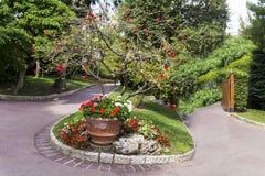 美丽的异乎寻常的庭院在摩纳哥 免版税图库摄影