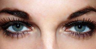 美丽的强的眼睛 库存照片
