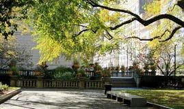 美丽的微小的公园在街市芝加哥 免版税库存照片