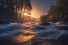 美丽的快速的河在日出的山森林里 免版税库存照片