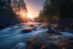 美丽的快速的河在日出的山森林里 库存图片