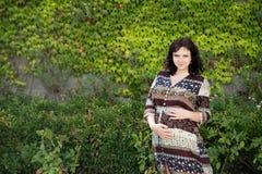 美丽的怀孕妇女在公园,庭院 室外 库存图片