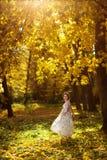 美丽的怀孕的女性在秋天 图库摄影