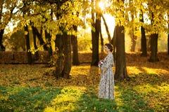 美丽的怀孕的女性在秋天 库存图片