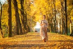 美丽的怀孕的女性在秋天 库存照片