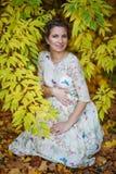 美丽的怀孕的女性在秋天 免版税库存照片