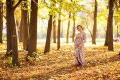美丽的怀孕的女性在秋天 免版税图库摄影