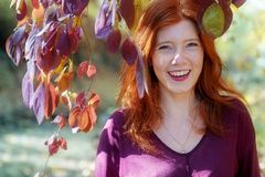 美丽的性感的可爱的年轻狡猾的火热的红发女孩,在紫罗兰色淡紫色秋天灌木下,在公园,愉快,快乐, 库存图片