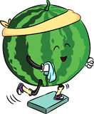 美丽的成熟西瓜参与健身 免版税库存图片