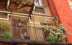 美丽的房子的细节有红砖门面的  图库摄影
