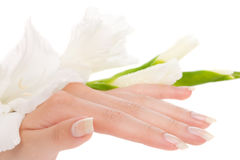 美丽的手指钉子 免版税库存照片