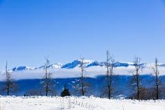 美丽的抽象风景冬天山 库存照片