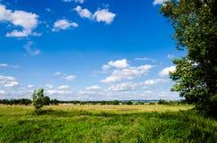 美丽的捷克农村草甸 免版税库存照片