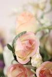 美丽的接近的桃红色玫瑰 库存照片