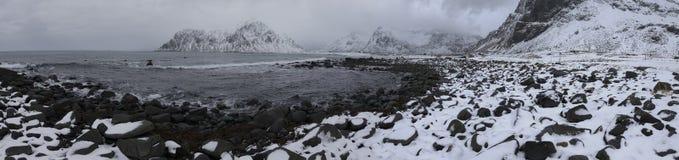 美丽的斯诺伊Haukland Utaklev海滩Anoramic视图在Lofoten海岛的 免版税库存照片