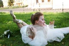 美丽的新娘和小猫 库存图片