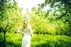 美丽的新娘室外在公园,后面看法 库存图片