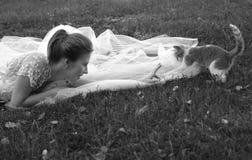 美丽的新娘小猫 库存照片