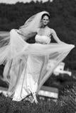 美丽的新娘年轻人 免版税库存图片