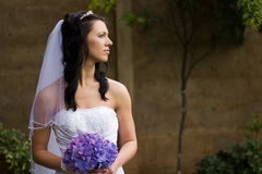美丽的新娘年轻人 库存图片