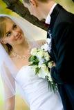 美丽的新娘新郎室外集 库存图片