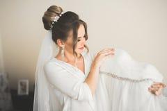 美丽的新娘画象有时尚面纱的在婚礼早晨 库存照片