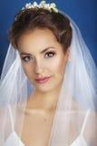美丽的新娘纵向 礼服片段顺序婚礼 看经典白色的面纱的年轻柔和的安静的新娘  婚姻婚礼之日 Portra 免版税库存照片
