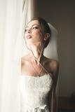 美丽的新娘画象有时尚面纱的在婚礼早晨 免版税库存图片