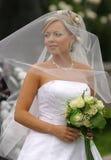 美丽的新娘 免版税库存照片