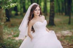 美丽的新娘HD 图库摄影