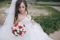 美丽的新娘HD 库存照片