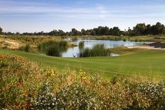 美丽的新的现代高尔夫球场航路在亚利桑那 库存照片